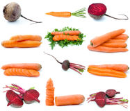 Set of different root vegetables. Isolated on the white background Stock Images