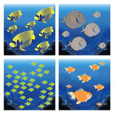 Set Of Different Scenes With Fishes Stock Photography