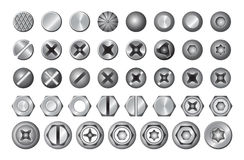 Set of different screws. vector illustration