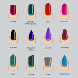 Set of different shapes of nails on gray. Nail shape icons.  Stock Photography