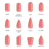 Set of different shapes of nails on white. Nail shape icons.  Stock Photo