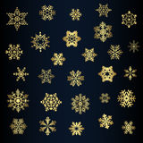 Set of different snowflakes vector Stock Image