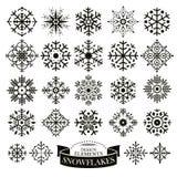 Set of different snowflakes Stock Photos
