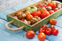 Set of different sorts of red tomatoes Stock Photo