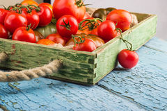 Set of different sorts of tomatoes Stock Photos