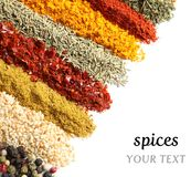 Set of different spices and herbs with space. For text on white background stock images