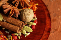 Set of different spices. (saffron, cinnamon, anise Royalty Free Stock Photos