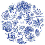 Set of different spring flowers and plants drawn by hand Stock Photos