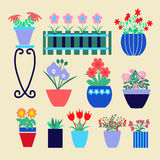 Set of different spring flowers in pots. Stock Photos
