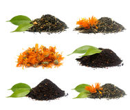 Set of different tea's Stock Images