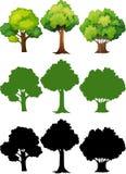 Set of different tree vector illustration