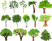 Set of different trees with green leaves. On white background Stock Images