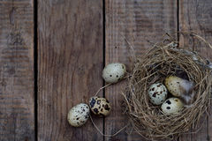 Set of different types birds eggs from chicken, pheasant and quail with feathers on a wooden background. stock photos