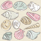 Set of different types of clams and shells on a beige  grunge ba Stock Image
