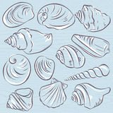 Set of different types of clams and shells on a blue  grunge bac Stock Images