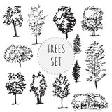 Set of different types hand drawn trees. Isolated on white background royalty free illustration