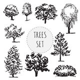 Set of different types hand drawn trees. Isolated on white background stock illustration
