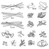 A set of different types of pasta. In black and white hand-drawing lines. Vector illustration stock illustration