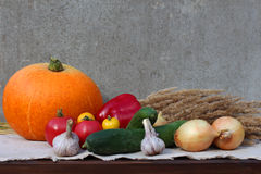 Set of different vegetables. Royalty Free Stock Photo