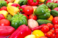Set of different vegetables. stock images