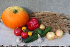 Set of different vegetables. Top view. Royalty Free Stock Photo