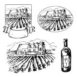 Set of different vineyard and bottle of wine. Set of different symbols of vineyard and bottle of wine Stock Photos