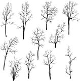 Set of different winter trees Stock Photography