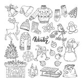 Set of different winters elements. Vector illustrations of holiday objects Stock Images