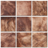 Set of different wood textures Stock Photography