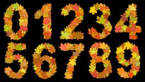 Digits consisting of autumn leaves. Set of digits from 0 to 9, consisting of big yellow autumn leaves on black background Stock Image