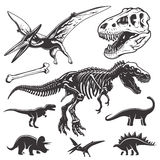 Set of dinosaurs elements Royalty Free Stock Photos