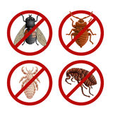 Set of disable signs with pest insects Stock Images