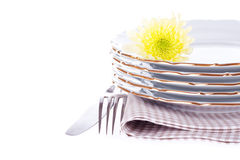 Set of dish, fork, knife, napkin and flower Royalty Free Stock Images