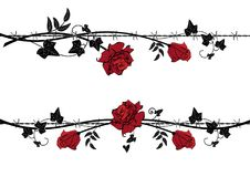 Set of dividers with rose with barbed wire. Set of vector dividers with rose and ivy with barbed wire in black, red and white colors Royalty Free Stock Photo
