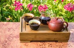 Set dla Chińskiego Chayapitie Zdjęcie Stock