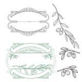 Set dla loga oliwka ilustracja wektor