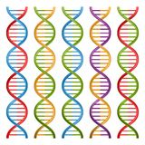 Set of DNA symbols for science and medicine. Stock Photo