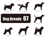 Set of dog breeds, black and white, side view, vector Stock Photo