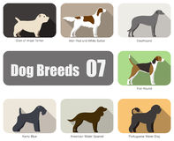 Set of dog breeds flat icon, vector illustration Royalty Free Stock Images