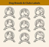 Set of Dog Breeds Labels, Dog Clubs Emblems Stock Photos