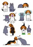 Set of dog and cat pairs. Set of cute Beagle dog and British short hair cat , in various posing stock illustration
