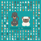 Set of dog character Royalty Free Stock Photography