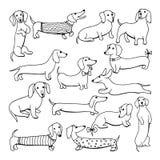Set of dog dachshund illustrations Royalty Free Stock Images