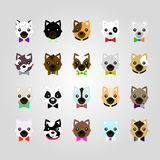 Set of the dog face Royalty Free Stock Photography