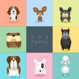 Set of dog family Stock Photos