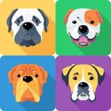 Set dog head icon flat design Royalty Free Stock Image