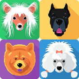 Set dog head icon flat design Royalty Free Stock Photo