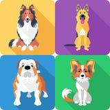 Set dog head icon flat design Royalty Free Stock Photography