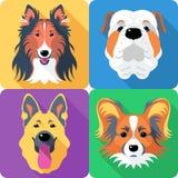 Set dog head icon flat design Royalty Free Stock Images