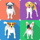 Set dog icon flat design Royalty Free Stock Images